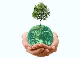 Green Trade 1