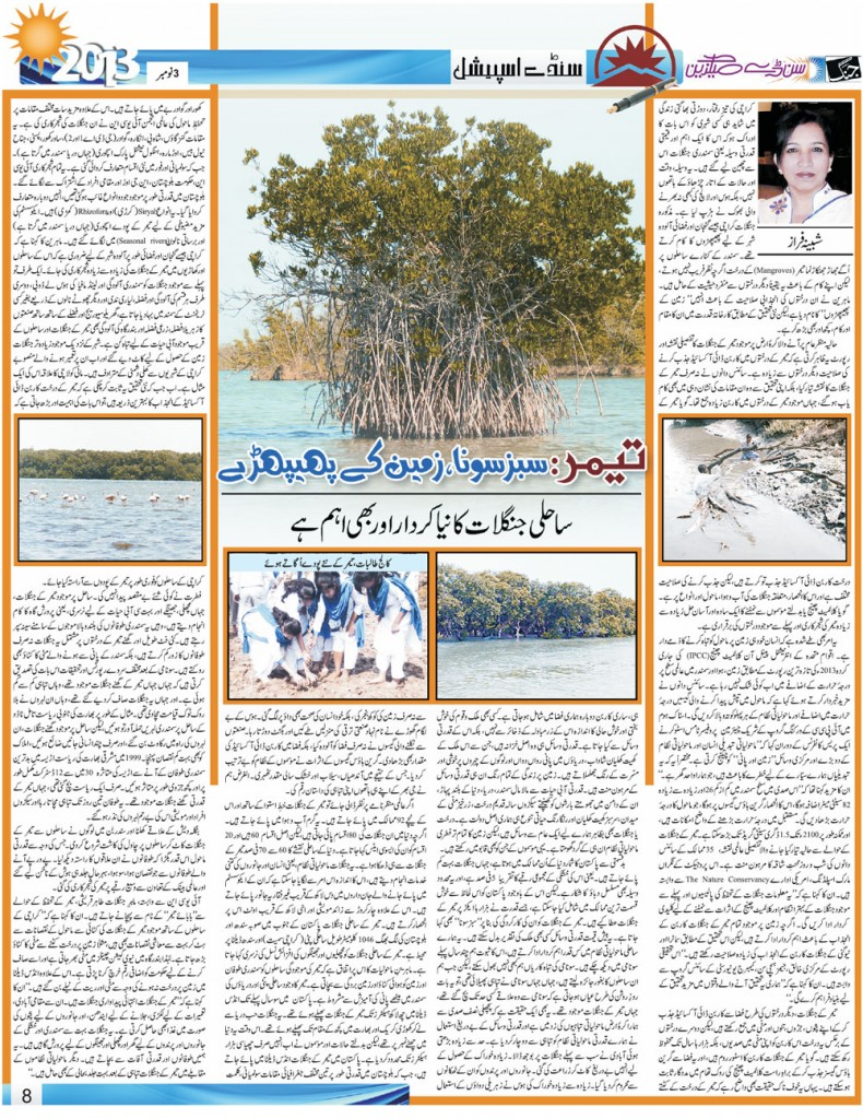 (9)New research about Mangroves